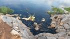 alalasandra lake 1