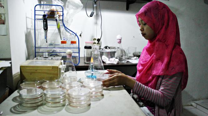 Okvit Musdalifah doing the analysis at Laboratorium Bioelektronika Lifepatch