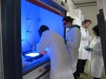 Turrell territory gel imaging
